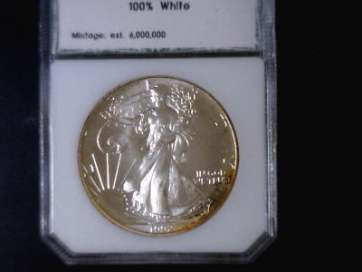 1992 1 Oz US BU SILVER EAGLE - Toned in Plastic Holder - NO RESERVE AUCTION