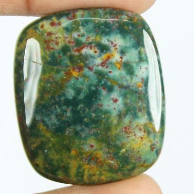 44ct Natural Best Grade Blood Stone Radiant Cabochon from Africa EZ80