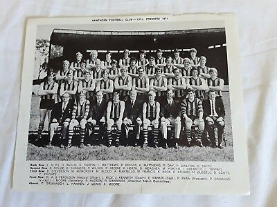 Hawthorn Football Club - Vfl Premiers 1971 Team Photo Print
