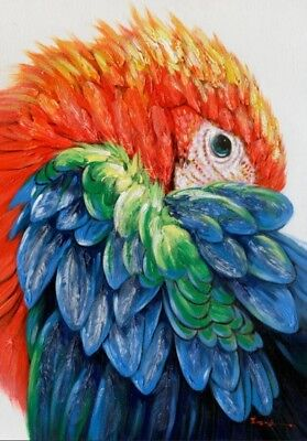New Parrot Bird Stretched Canvas Print Art Painting Wall Home Decor 100x70cm