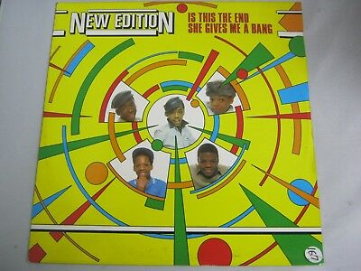 """Vinyl Record 12"""" Single NEW EDITION IS THIS THE END (86)"""