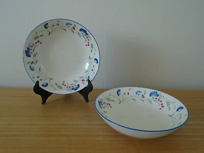 2 Vintage Royal Doulton Expressions Windermere English China 17.5cm Bowls