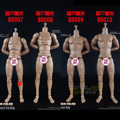 COOMODEL 1/6 Standard Muscle Man Body NO:BD008 Action Figure Doll