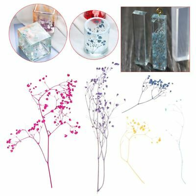 1Box Filling Dry Flower Handmade Flower DIY Epoxy Resin Filler Craft UV Material