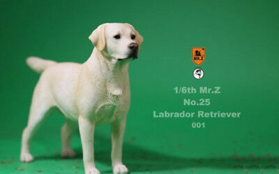 MR.Z 1/6 MRZ025 001Labrador Retriever Animal Dog Model Action Figure Pet model