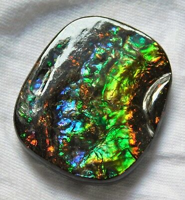 67.35 Cts Natural AAA Canadian Ammolite Cabochon Gemstone 36.6X30X5.6mm AW301-02