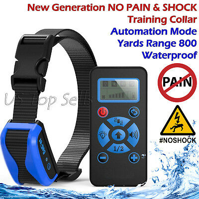 Electric Dog Training Collar Remote Waterproof Rechargeable NO PAIN & SHOCK 800Y