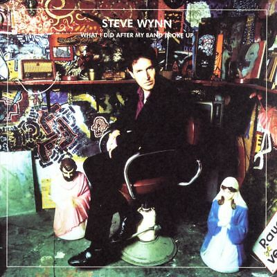 Steve Wynn - What I Did After My Band Broke Up: The Best of Steve Wynn/Visita...