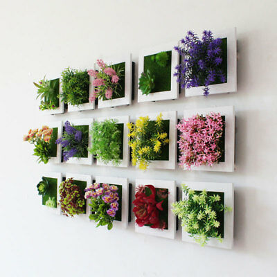 Square Flower Plant Frame Plastic For Wall Hanging Succulents Plant Home Garden
