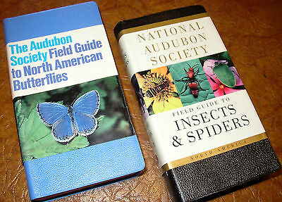 Audubon Society Insects Butterflies Spiders Entomology Arachnology Lepidoptera
