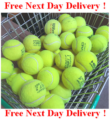 50 Used Tennis Balls - Good Condition -Games / Dogs- Washed - Next Day Delivery!