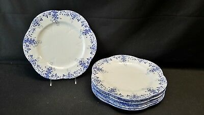 Shelley  Dainty Blue Set of 8 Large Dinner Plates England Bone China