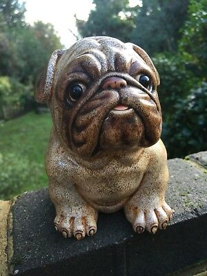 Extremely Rare 19th Century French Real Life Hand Carved Bovine Pug Statue Meiji