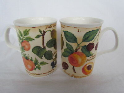 2 X Stunning Roy Kirkham Parchment Fruit Fine Bone China Mugs - 2000