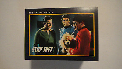 Lot Of 153 Star Trek 25th Anniv. Trading Cards 1991 Impel, NO Duplicates..LOOK!