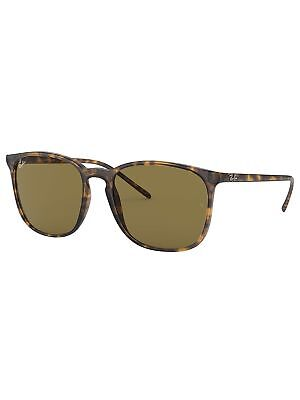 1be2b90ebf RAY-BAN MEN S ACETATE Round Fleck Sunglasses