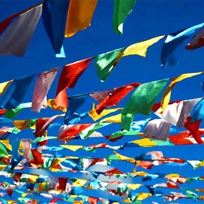 20 Tibetan Prayer Flags 5 metres 27x15cm flags Religions Peace Buddhist Spirit !