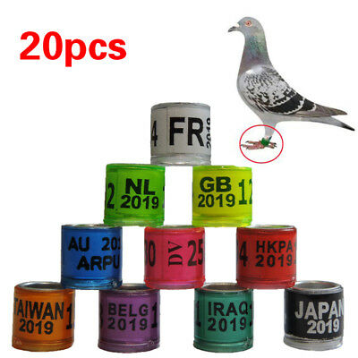 Personal Customization Pigeon Rings Bird Ring Leg Rings Identify Dove Bands 8mm Plastic Aluminium Rings Security & Protection