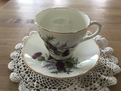 Duchess bone china teacup and saucer #371 Scotch thistle (pre-owned)