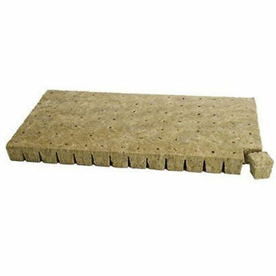 20 x PREMIUM GRODAN WRAPPED ROCKWOOL CUBES 100MM x 100MM WITH HOLE ROCK WOOL