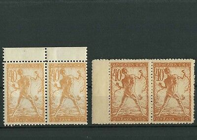 SHS - Slovenia Chainbreakers 1919 40 Vin ☀ Litography Pairs MNH
