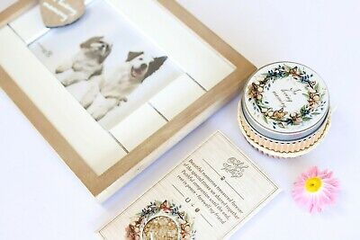 Pet Loss Memorial Gift Set With Photo Frame, Seed Card, Candle. Dog, Cat, Horse