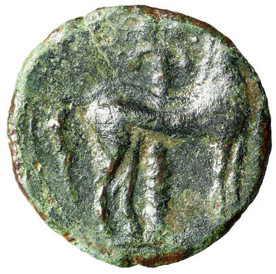 """PRE PUNIC WAR Carthage Greek Coin """"Tanit & Horse By Palm Tree"""" CERTIFIED GENUINE"""