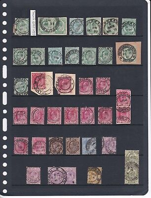 South Africa Cape of Good Hope Stamps Used in Natal - Interprovincial Collection