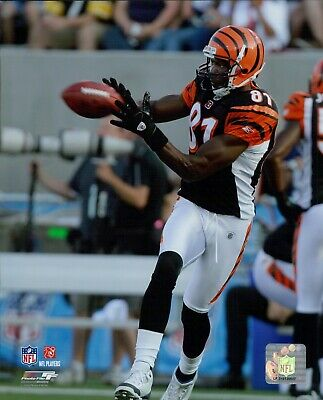 4498741eec9 Terrell Owens Cincinnati Bengals NFL Licensed Unsigned Glossy 8x10 Photo A