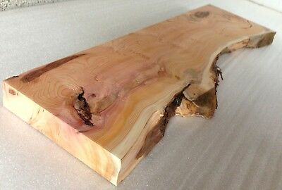 Yew - Character / Rustic Grade Timber Woodcraft Woodwork Waney / Live Edge