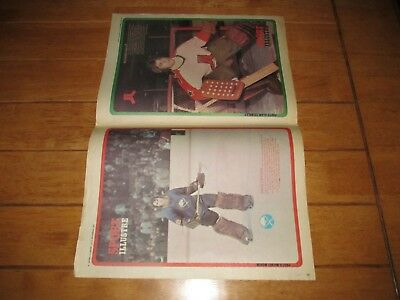 1973 Vintage Hockey Poster of DAVE DRYDEN RICHARD SAUVE Buffalo Sabres 15.5x22.5