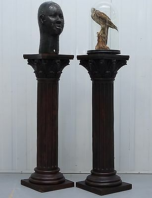 Pair Of Solid Rosewood Corinthian Hand Carved Pillar Stands For Busts Taxidermy