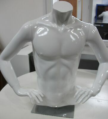 Male Mannequin Bust Shop Display Six Pack Boutique 29 inch