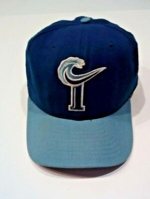90s Tidewater Tides Minor League Baseball Fitted Hat New Era Size M-L Pro  Model.   fb46001271ca