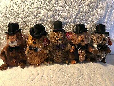 Lot 5 Ty Beanie Baby Groundhog Punxsutawney Phil 2004 2005 2006 2007 2008  NEW 6157b90b159c