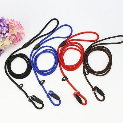 Nylon Pet Dog Lead Puppy Walking Slip Strong Rope Collar Training Strap Leash