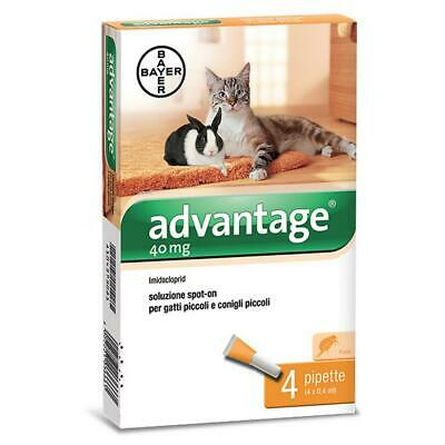 Bayer advantage pesticide spot on pour chats et lapins fin à 4 kg