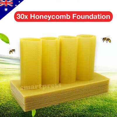 30Pcs Honeycomb Foundation Wax Frames Beekeeping Honey Equipment Bee Hive Supply