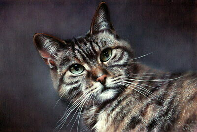 Original Acrylic Painting Tabby Cat Realism Pet Art by Christina Schulte