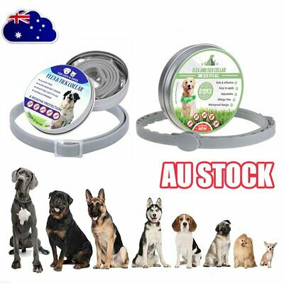 US  Collar DOGS Ticks And Flea Treatment 8 Month Protection MN