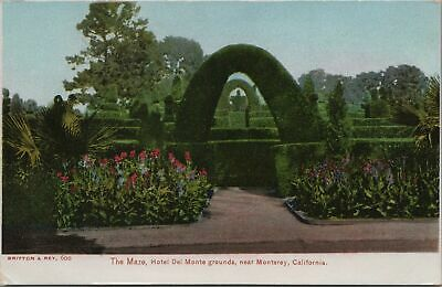 Undivided Postcard The Maze Hotel Del Monte Grounds Monterey California CA