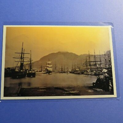 1893 Cape Town South Africa Windjammers Vintage 4X6 Photo Reprint PH990