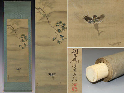 JAPANESE PAINTING Bird HANGING SCROLL JAPAN FLOWER PLANT ANTIQUE ORIGINAL 327i