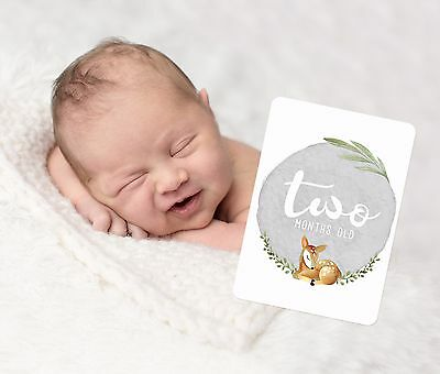 Gender Neutral Baby Milestone Cards. Unisex Sweet Deer. Monthly Pack of 13 Cards
