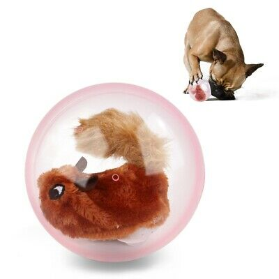 Pet Dog Hamster Toy Electric Ball Built-in Plush Toys Automatic Interactive Toys