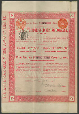South Africa: White Rose Gold Mining Co. Ltd., 5 shares, 1895