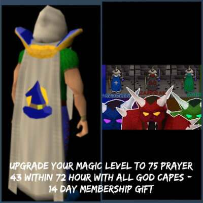 RUNESCAPE OSRS UPGRADE Your Agility Level To 68 + Colored Graceful