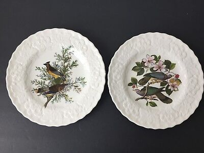 "Meakin China Audubon ""Birds Of America"" Set of 2 Embossed 9"" Plate #43 and #367"