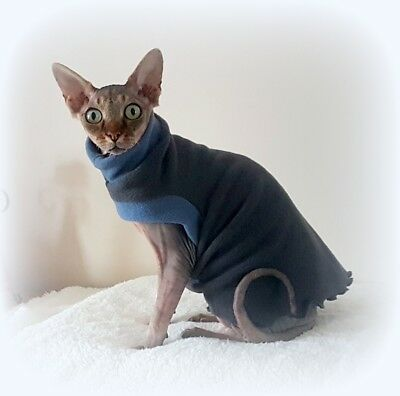 comfy GREY top  for a Sphynx cat, cat clothes, cat top, pet sweater, Sphynx top