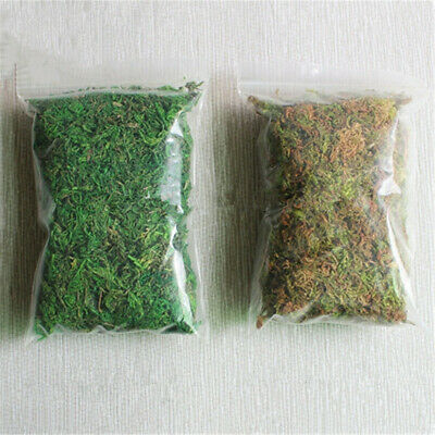 20/50/100g Artificial Dry Moss For Flower Hanging Basket Home Garden Decoration